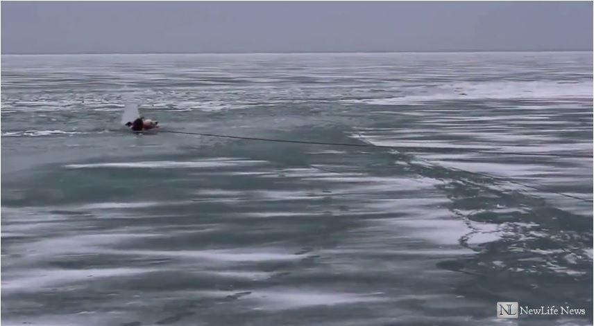 Спасение собаки из озера Мичиган