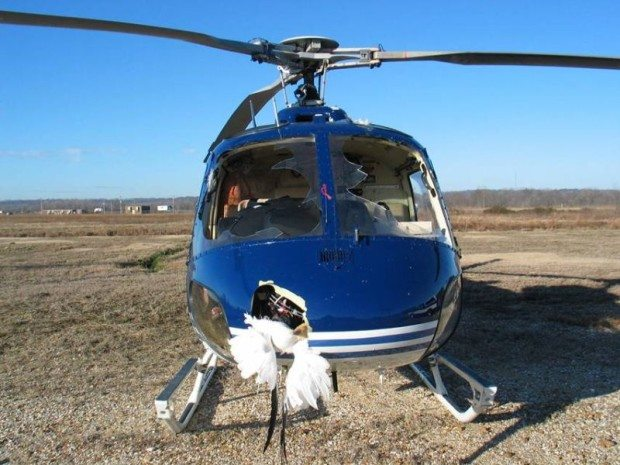 Встреча медицинского вертолета со стаей птиц