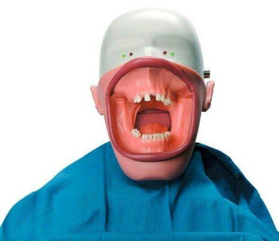 Страшнее стоматологов только их учебные манекены