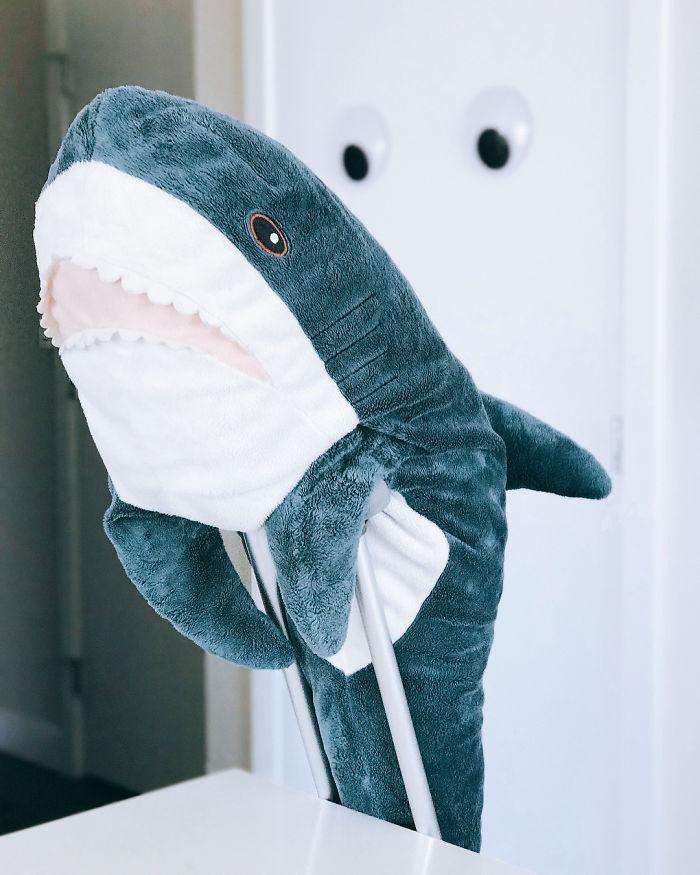 ягоды фотки акула из икеи воспользовался солнечным